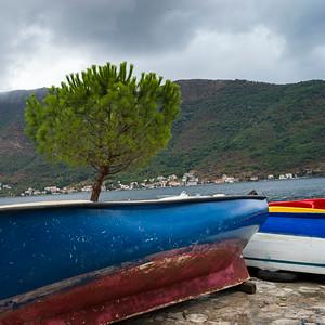 Boats at harbor, Perast, Bay of Kotor, Montenegro