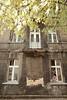 PL 2178  Tenemant houses