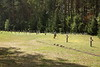 PL 696  Execution site, Treblinka 1