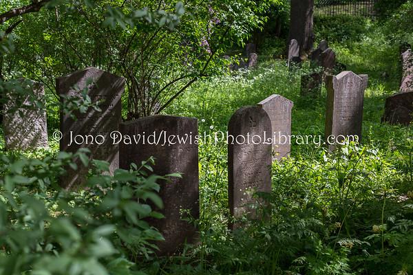 SWEDEN, Stockholm. Kronoberg Cemetery. (5.2018)