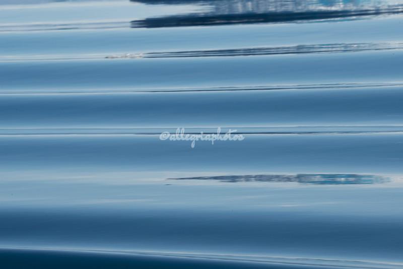 Ripples run through the calm waters of Sermilik Fjord.