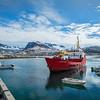 "The supply ship ""Johanna Kristina"" arrives in Tinit."