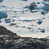 Kayaking on Sermilik Fjord