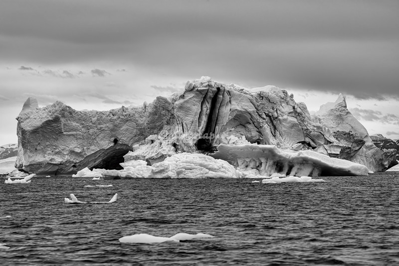 Black and White image of an iceberg, Sermilik Fjord
