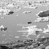 A lone boat amongst the ice, Sermilik Fjord