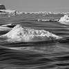 Black and white image of Sermilik Fjord, Greenland