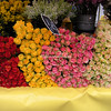 Roses Paris Street market