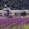 L'Abbaye de Senenque, Provence