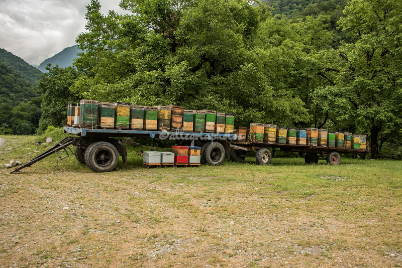 Trailer of hives, Tusheti, Georgia