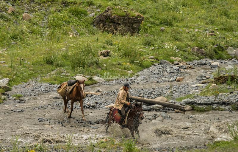 Tush horsema racing through the river, Dartlo