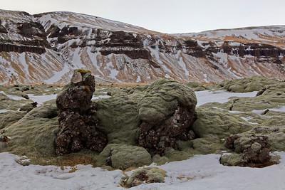 Quel est ce monstre vert couché sur ces formations volcaniques ?...