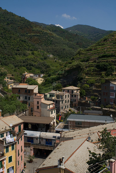 Vineyards above Vernazza, with the train station and some of the homes in the foreground
