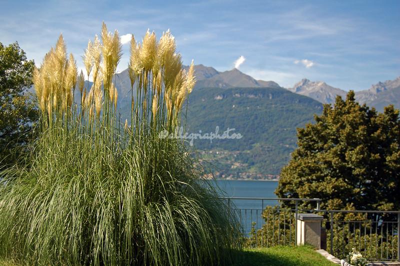 Abbazzia di Piona, Lake Como