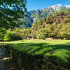 Stone wall along the Marmite dei Giganti park in the Valchiavenna, Lombardy, Itly