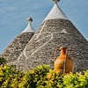 A Trullo Rooftop and Amphora, Alberobello, Puglia, Italy