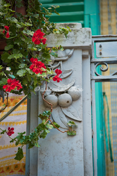 Flowers and sculpture, Cisternino, Puglia