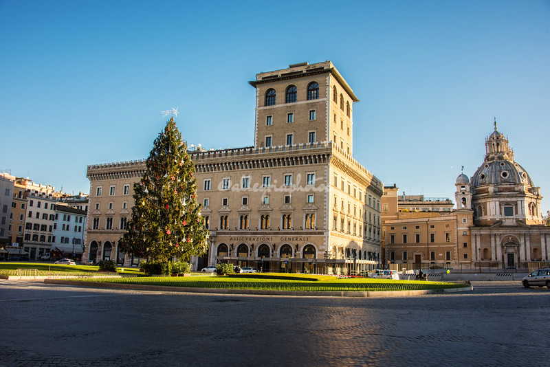 Christmas Tree, Piazza Venezia