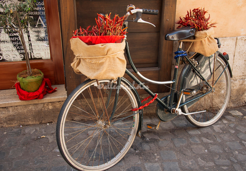Whimsical bicycle