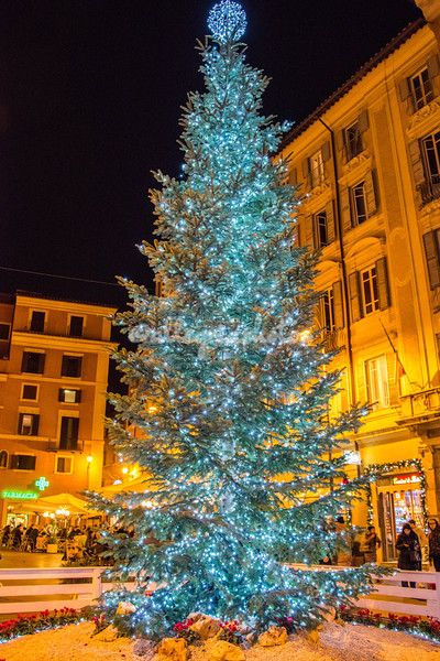 Christmas tree outside San Lorenzo in Lucina