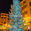 Christmas tree outside San Lorenzo in Lucina