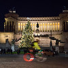 Nighttime view of Christmas tree on Piazza Venezia