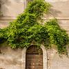Old Door on the Appia Antica, Rome