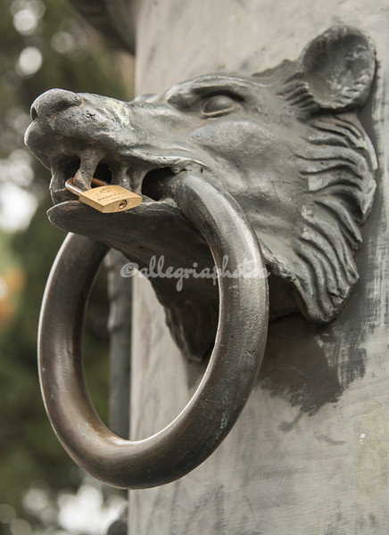 Boar's head ring on Pillar, Baths of Diocletian, Rome