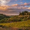 Sunset, Castellina in Chianti