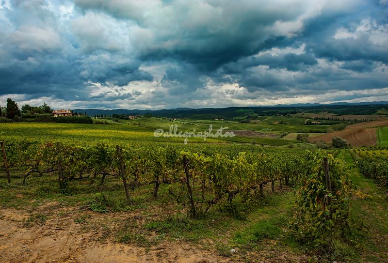 Chianti Valley, Tuscany