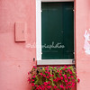 Red flowers on pink building, Burano, Venice