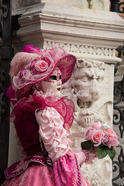 The Lion of Venice and the Lady in Pink