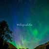 Northern Lights as seen in Valldal, Norway