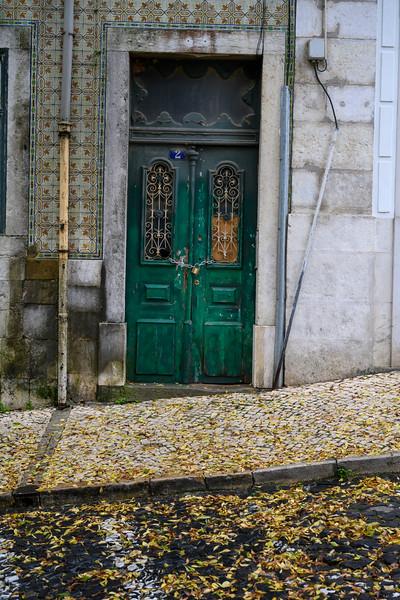 Fallen leaves on street, Alfama, Sao Miguel, Lisbon, Portugal