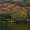 Scenic view of riverbank, Douro River, Douro Valley, Portugal