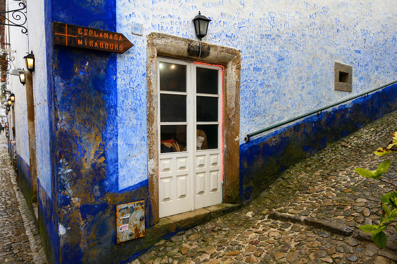 Houses along street in a town, Obidos, Leiria District, Portugal
