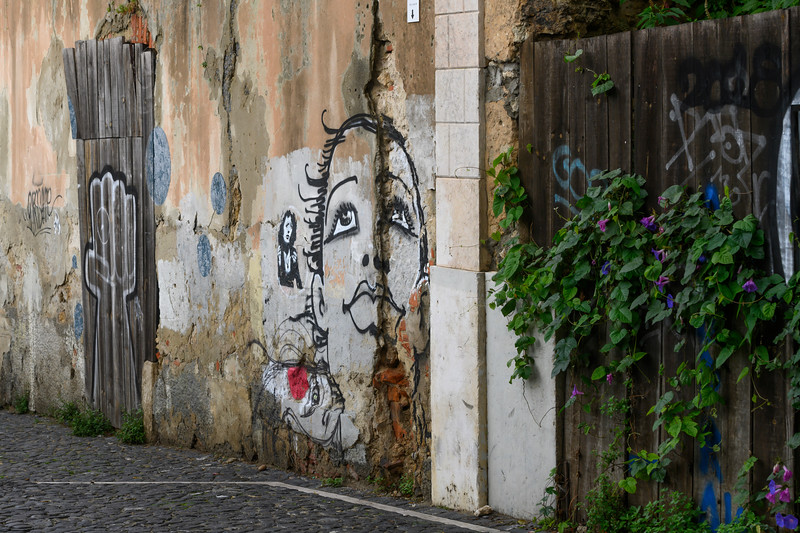 Public Art on the wall of typical house in Santiago, Lisbon, Portugal