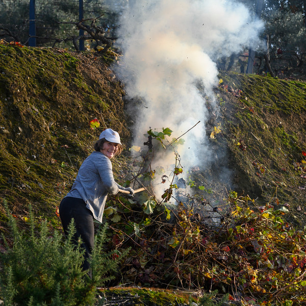 Woman burning weeds, Lamego Municipality, Douro Valley, Viseu District, Portugal