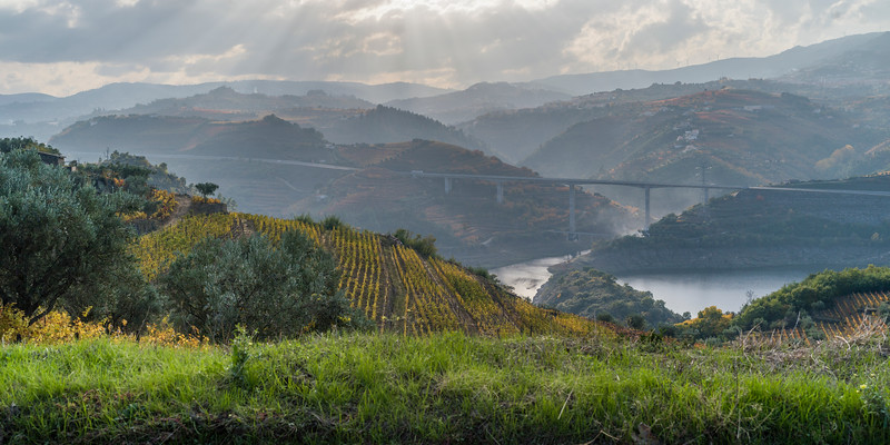 Bridge over a river, Lamego Municipality, Viseu District, Douro Valley, Portugal