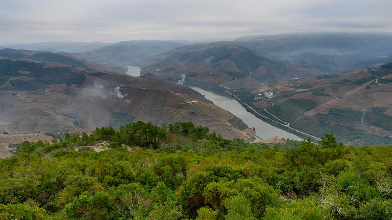 Scenic view of river passing through field, Peso da R�gua, Vila Real, Douro Valley, Portugal