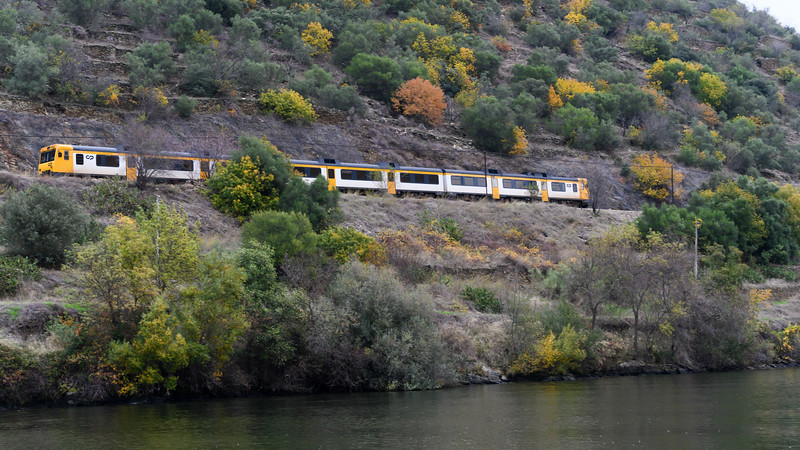 Tourist train moving along mountainside, Douro River, Douro Valley, Portugal