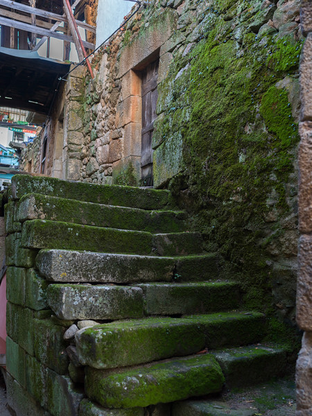 Moss covered steps in Old Jewish Quarter, Salzedas, Douro Valley, Portugal