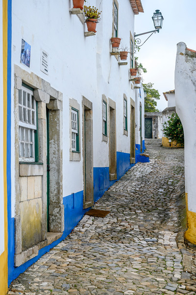 Houses along narrow street in a town, Obidos, Leiria District, Portugal