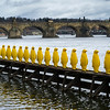 Row of Yellow penguins sculptures at Museum Kampa with Charles Bridge in background, Prague, Czech Republic