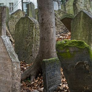 Tombstones in Old Jewish Cemetery, Prague, Czech Republic