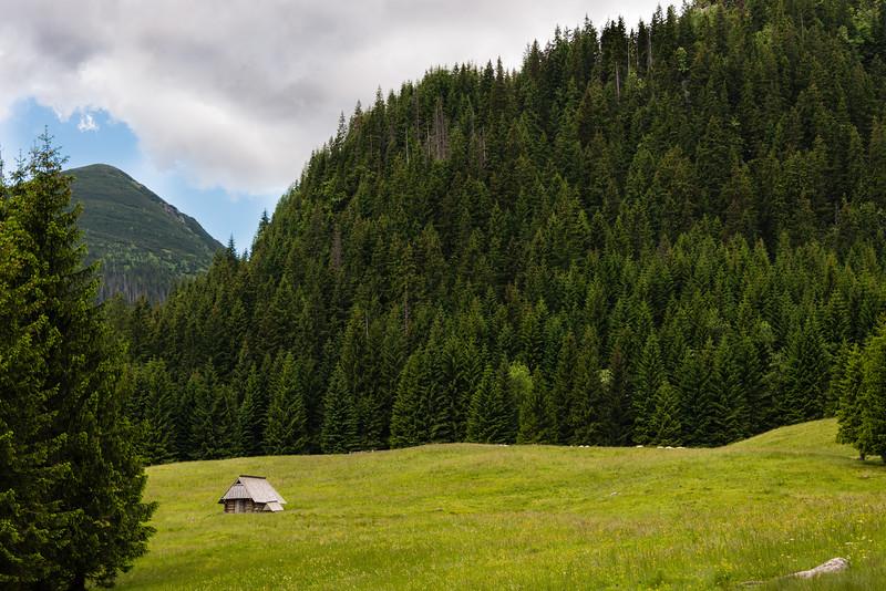 In the Tatras