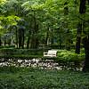 Łazienki Palace gardens