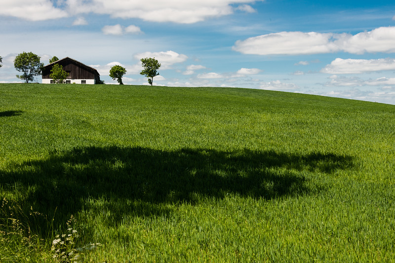 House and Field, Eastern Poland