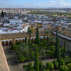 Elevated view of courtyard of Mosque of Cordoba, Andalusia, Spain