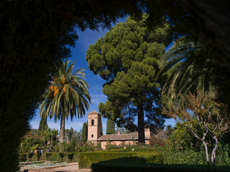 Bell tower seen from garden of Alhambra Palace, Alhambra, Granada, Spain