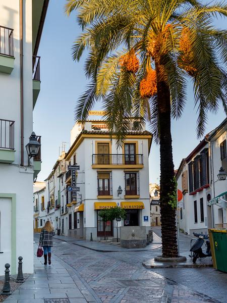 Woman walking on the sidewalk, Cordoba, Andalusia, Spain
